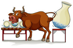 A bull in a China shop. On a white background royalty free illustration