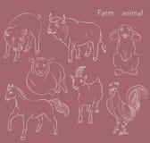 Bull-cock-goat-horse-pig-rabbit-sheep Stock Image