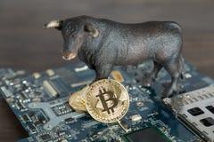 Bull com Bitcoin Cryptocurrency no cartão-matriz do computador Bull M foto de stock royalty free