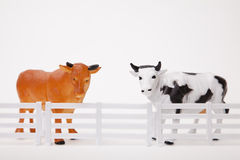 Bull and Cow. Toy bull and cow figurines standing behind a fence Stock Photo