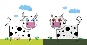 Bull and cow Stock Photography