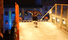 bull crashed ice red Στοκ εικόνα με δικαίωμα ελεύθερης χρήσης