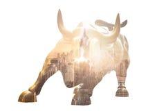 Bull de carga en Lower Manhattan, NY Imágenes de archivo libres de regalías