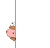Bull derrière le banc illustration stock