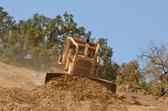 Bull Dirt Royalty Free Stock Photos