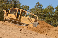 Bull Dirt Stock Photo
