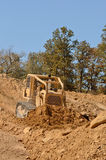Bull Dirt Stock Photography