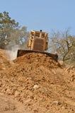 Bull Dirt Stock Photo
