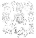 Bull dog dragon horse monkey rabbit sheep snake-tiger Royalty Free Stock Photos