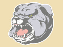 Bull Dog Head Cartoon Stock Images