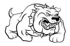 Bull Dog Vector Illustration Stock Photos