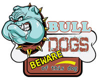Bull dogs Royalty Free Stock Images