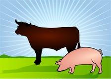 Bull e porco Imagem de Stock