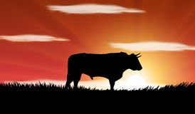 Bull in the field in Spain. Silhouette of a bull in the field in Spain Stock Illustration