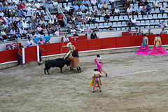 Bull fight Barcelona Stock Photos