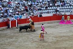 Bull fight Barcelona Stock Photos