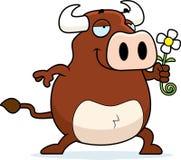 Bull Flower Royalty Free Stock Photo
