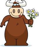 Bull Flower Royalty Free Stock Photos