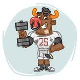 Bull Football Player Holds Dumbbell Royalty Free Stock Image