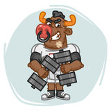 Bull Football Player Holds Two Dumbbells Royalty Free Stock Images