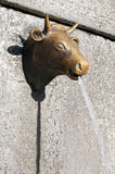 Bull fountain Royalty Free Stock Image