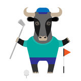 Bull golf player Stock Photo