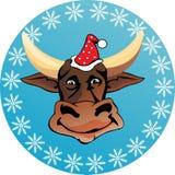 Bull head Royalty Free Stock Photos
