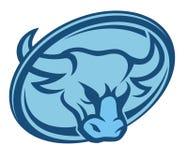 Bull head circle Stock Images