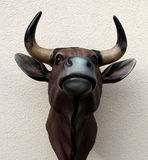 Bull head Royalty Free Stock Images