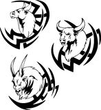 Bull head tattoo Stock Photo