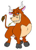 Bull intense Photo libre de droits