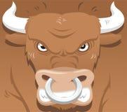 Bull irritada Imagens de Stock
