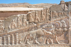 Bull and lion fighting on the bas-relief of Persepolis palace walls, Iran Stock Photography