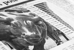 Bull market Stock Image