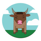 Bull on a meadow, sky with clouds Stock Photography