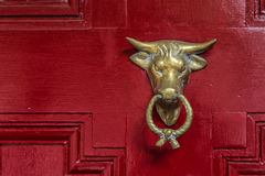 The Bull. A metal bull in a red door Stock Image
