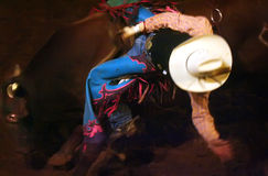 Bull-Mitfahrer Stockfotografie