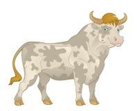 Bull Stock Photo