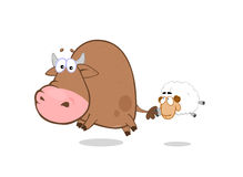 Bull - oveja Fotos de archivo libres de regalías
