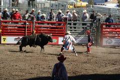 Bull que va después de payasos después de jinete consiguió bucked Fotografía de archivo libre de regalías
