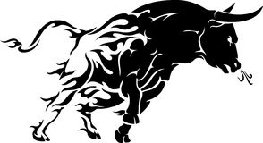 Bull Rage Stock Photos