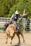 Bull Ride Royalty Free Stock Image