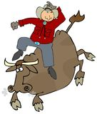 Bull Rider Stock Images
