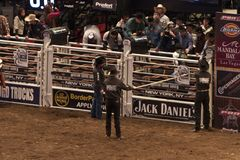 Professional Bull Rider tournament on Madison Square Garden royalty free stock images