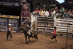 Professional Bull Rider tournament on Madison Square Garden stock photo