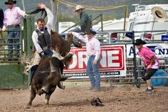 Free Bull Riding Royalty Free Stock Photos - 13267808