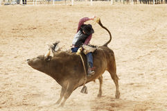 Bull Riding 2 Stock Photo