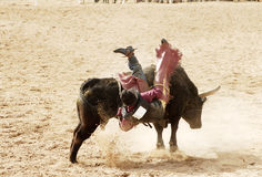 Bull riding 4. The bull riding event at a rodeo in Arizona Royalty Free Stock Photos