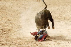 Bull riding 5. The bull riding event at a rodeo in Arizona Royalty Free Stock Images