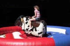Bull riding royalty free stock photos